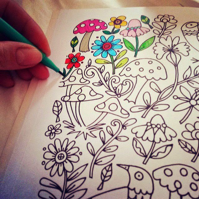 Enchanted Forest Coloring Book Download Not Just For Kids Why You Need To Start