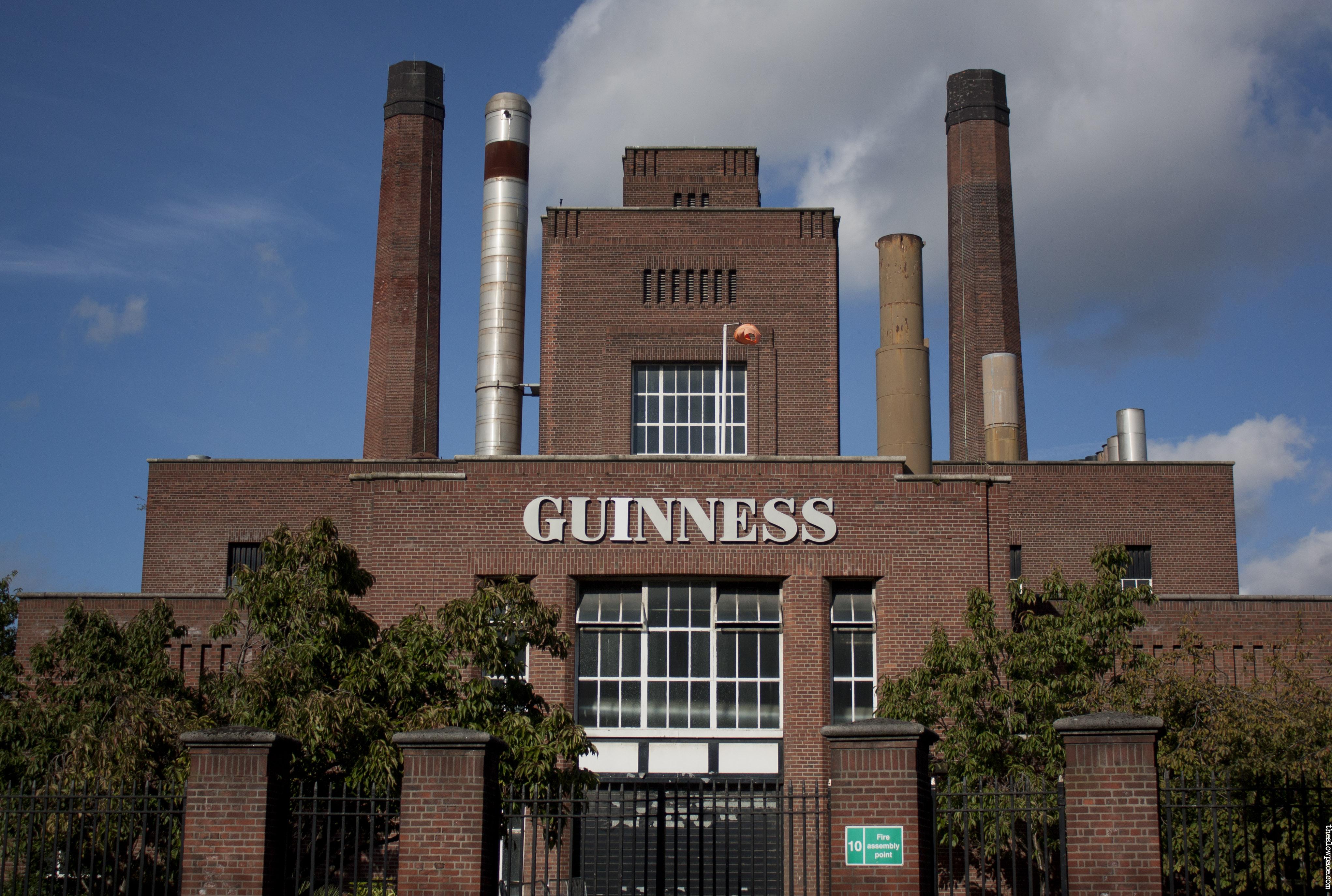 Guinness storehouse shemazing for Best tattoo shop dublin