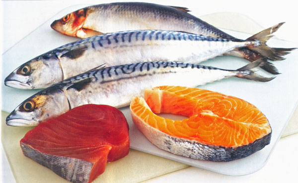 Image result for fatty fish protein