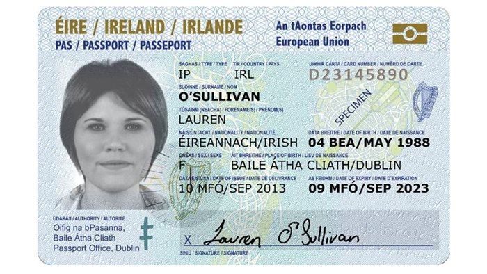 how to become an immigration officer in ireland