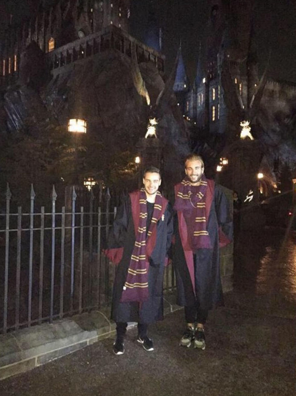 Amazing The Biggest Harry Potter Shrine Its In Liam Paynes Back Garden Funny Birthday Cards Online Aeocydamsfinfo