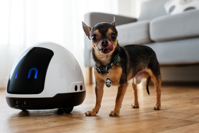 Will robot pets replace real dogs or cats? So fetch or no