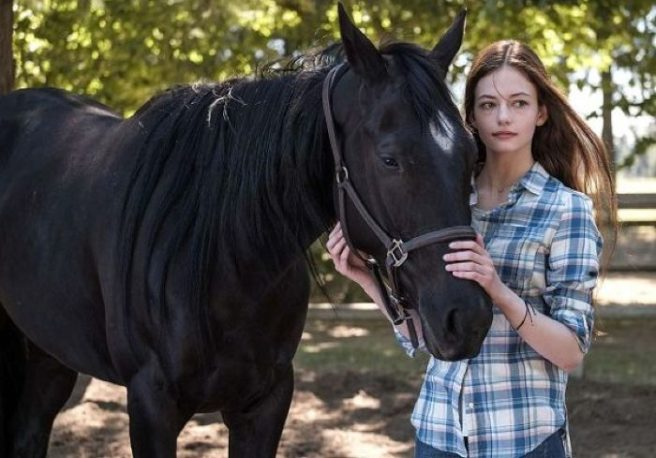 Disney+ reimagines Black Beauty with trailer for new movie